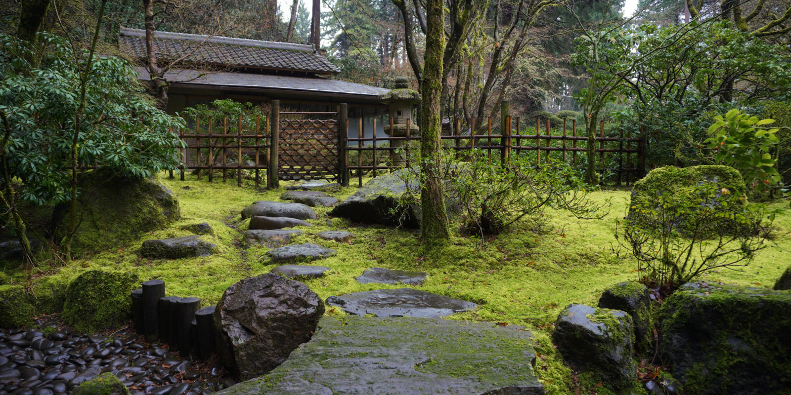 Tea House Viewed from Tea Garden after Rain. Photo by Tyler Quinn
